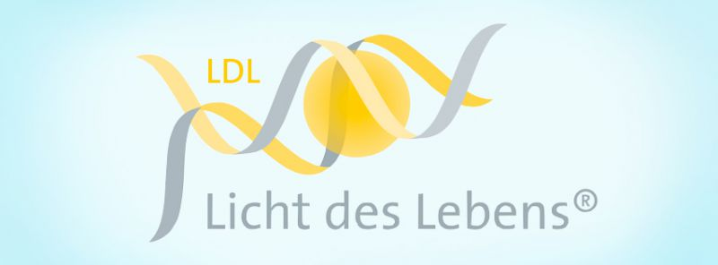 Licht des Lebens bei Simone Schicht Balance Dresden